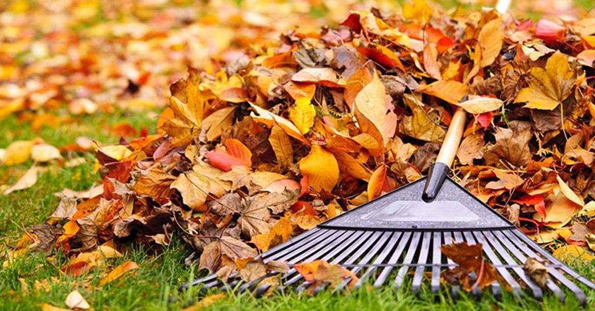 Jesenný gazda